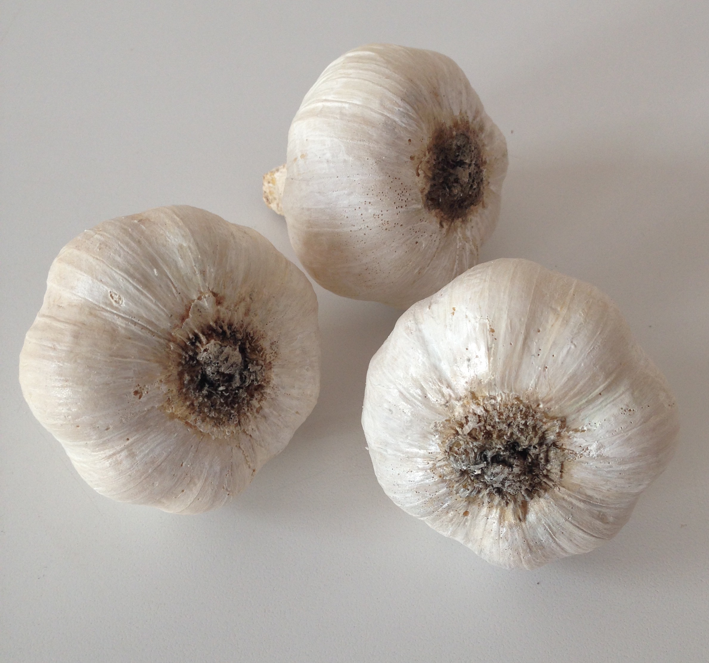 Fabricated garlic