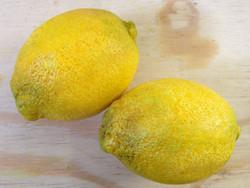 Fabricated lemons