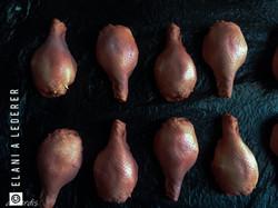 Fabricated chicken