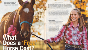 What Does a 'Free' Horse Cost? Part 1