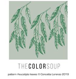 eucalipto leaves