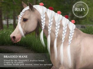 REIN - Braided Mane
