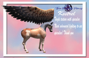 The Flying Pony - Pegasus Appliers