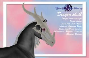 The Flying Pony - Dragon Skull