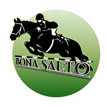 Bona Salto Logo.png