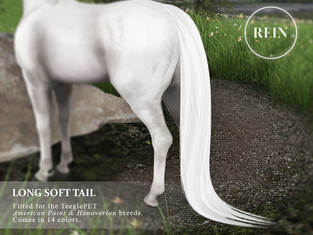 [REIN] Long Soft Tail