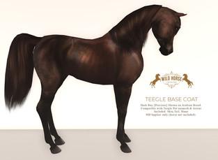 Wild  Horse - Skins & Eye Textures