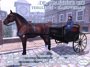 Don't Fret - Stanhope Gig Carriage/Harness