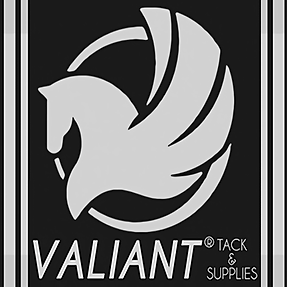 valiant_logo_square_promotional.png