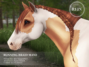 [REIN] Running Braid Mane