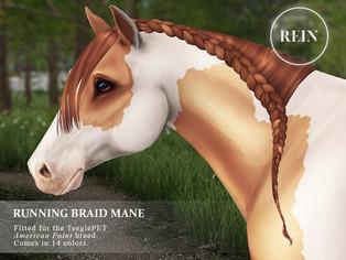 [REIN] Running Braid Mane