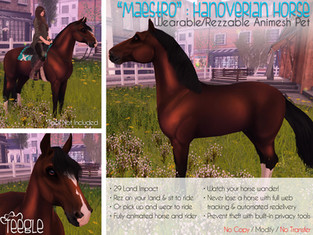 """""""Maestro"""" the Hanoverian Horse"""