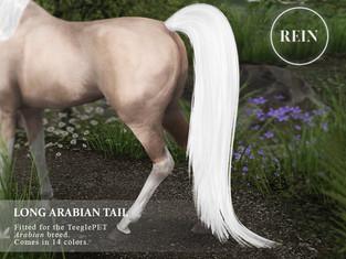 REIN - Long Arabian Tail