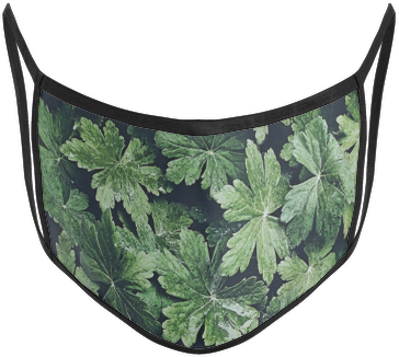 Floral Mask