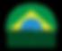 100_brasileira.png