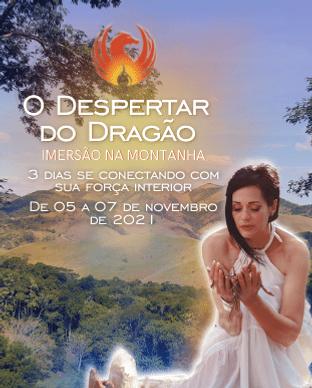 311x388 - O Despertar do Dragão   (2).png