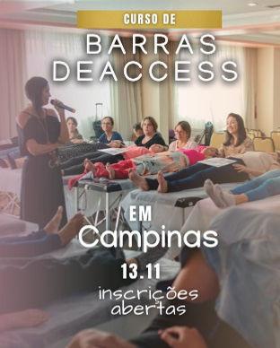 311 x 388 px Barras de Access Kelly Moraes Campinas 2021 (1).jpeg