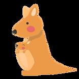 illust_kangaroo.png