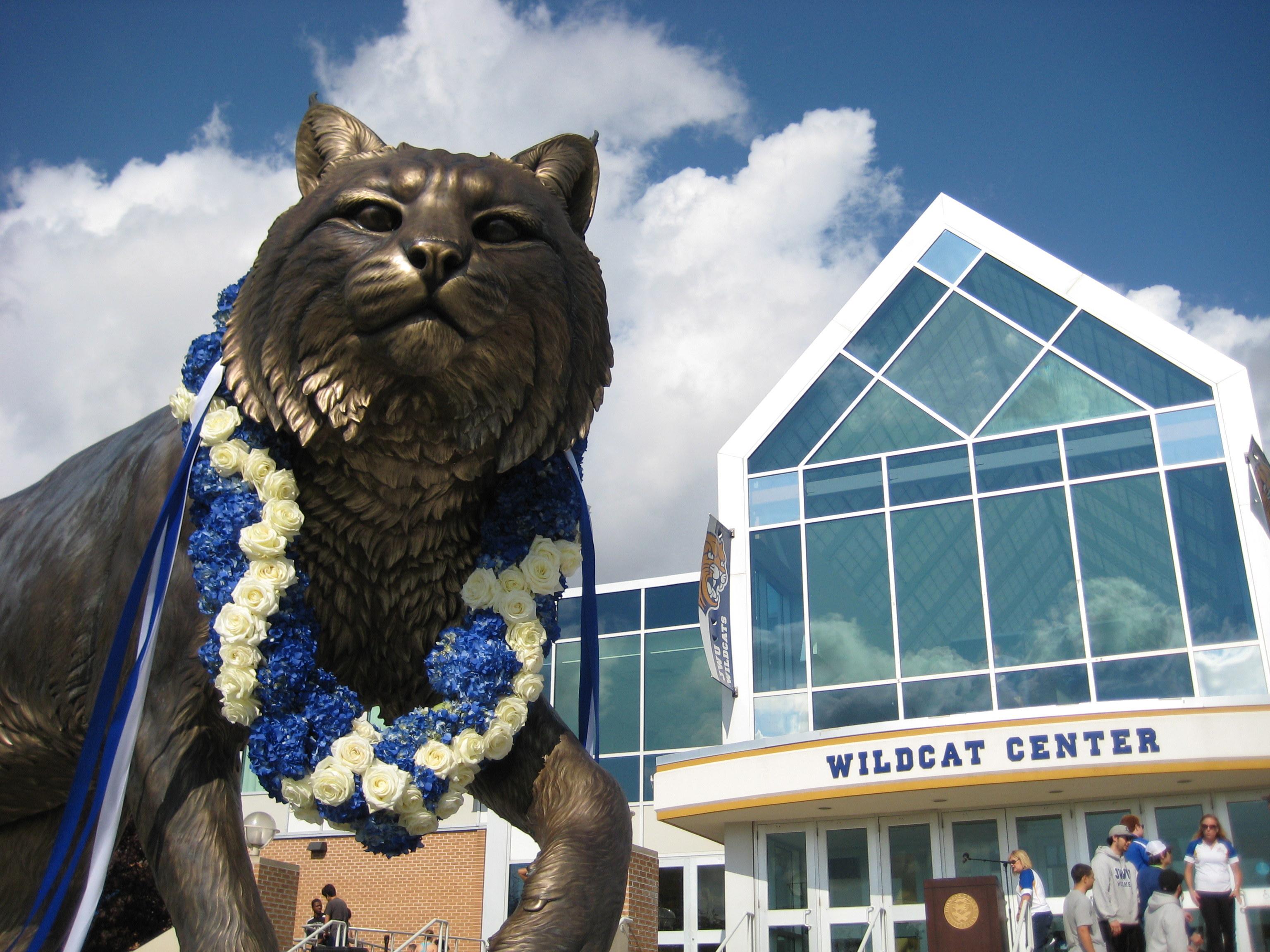JWU Wildcats Mascot Unveiling
