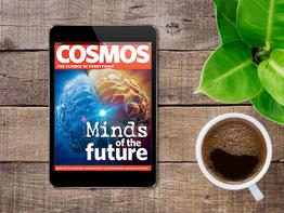 COSMOS: A Case Study of Flourishing Media