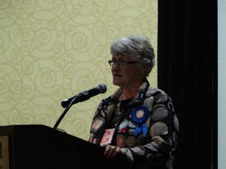 Convention Chair, Pat Freeders