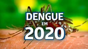 Casos de Dengue em 2020 voltaram a subir em comparação aos anos anteriores