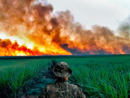 Polícia Ambiental inicia operação para prevenir os focos de incêndio