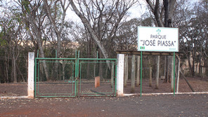 Bosque Municipal completa 7 anos