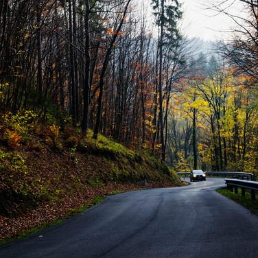 Осенний поворот