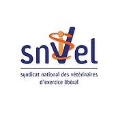 Logo SNVEL.jpg