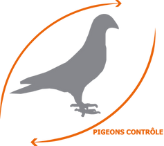 Logo - Pigeons Contrôle