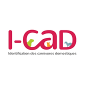 ICAD 1000x1000.png