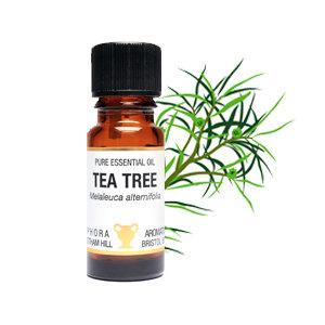 AMPHORA AROMATICS TEA TREE ESSENTIAL OIL 10ML