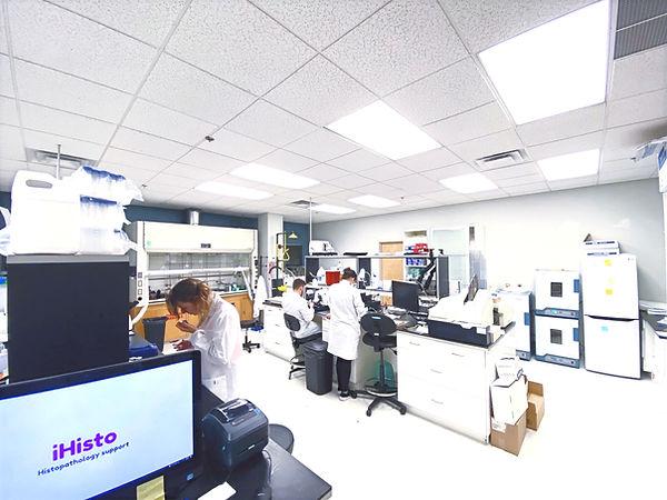 iHisto's Lab2