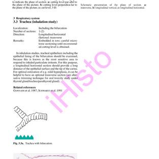respiratory-system_page_16.jpg