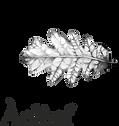 Àclèaf Logo.png