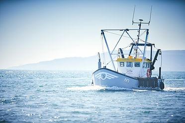 The Sidney Rose at sea.jpg
