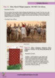 Textiles of Western India 202014.jpg