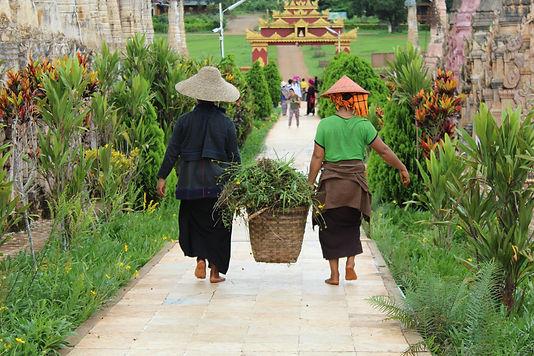Kalaw Myanmar.jpeg