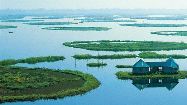 Phumdis on Lake Moiran, Manipur