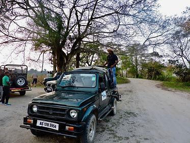 jeep safari, Kaziranga National Park