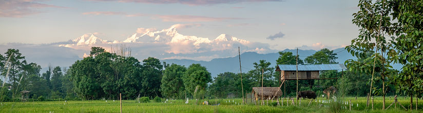 Chitwan.jpeg