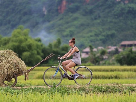 Ha Long - Another Quirky Side to Vietnam