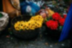 FlowerMarketKolkata.jpeg