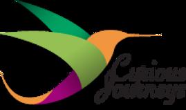 Logo---Curious-Journeys.png