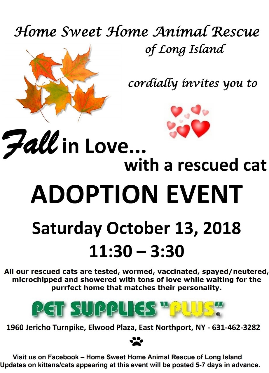 Autumn Adoption Event 10.13.18.jpg
