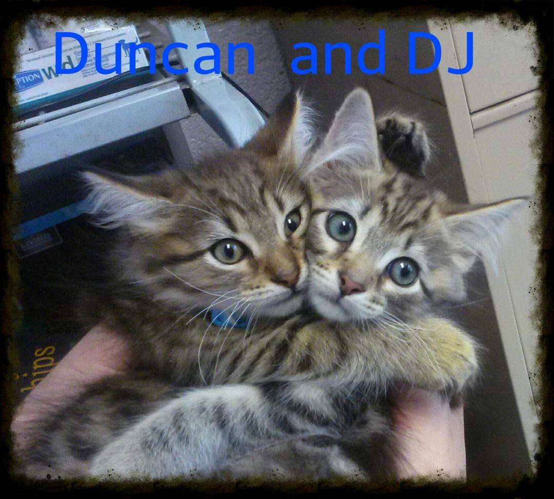 Duncan and DJ