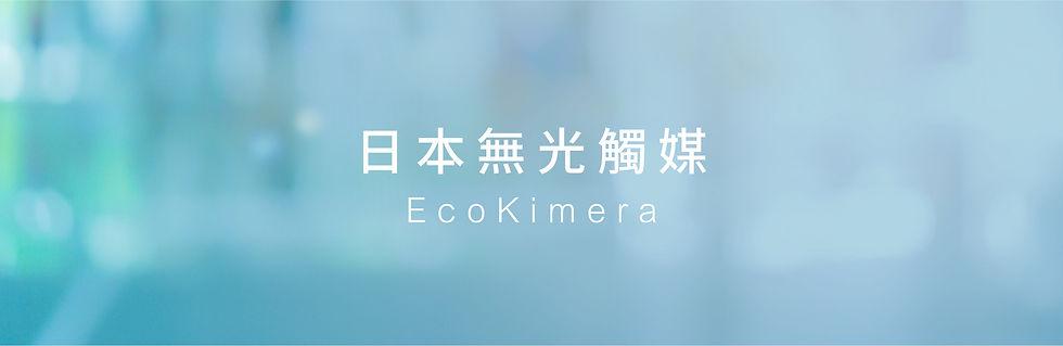 T4H_Web Banner_Ecokimera_1.jpg