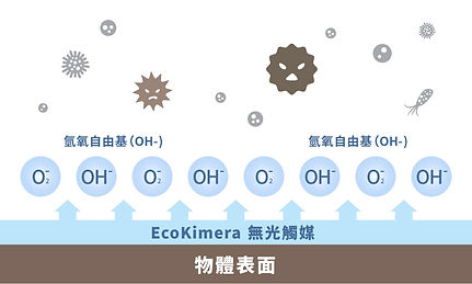 T4H_Web Banner_Ecokimera_3.jpg
