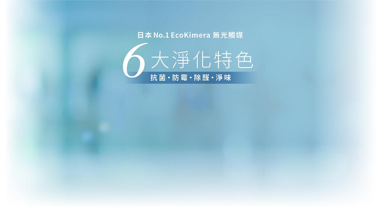 T4H_Web Banner_Ecokimera_9.jpg